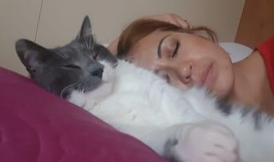 mercy pozo dorme con il suo gatto