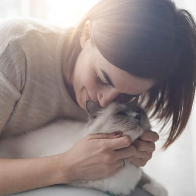 abrazando al gato.jpg