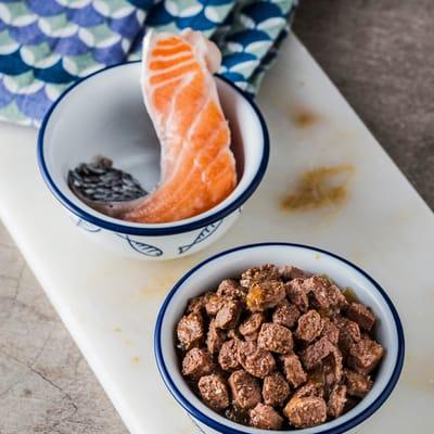 salmón para gato.jpg