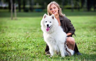 cane-samoiedo-felice-sul-prato-con-una-ragaza-sorridente