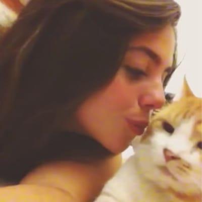 gato no quiere besos humana