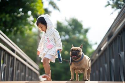 bulldog-francese-al-guinzaglio-con-bambina-sul-ponte