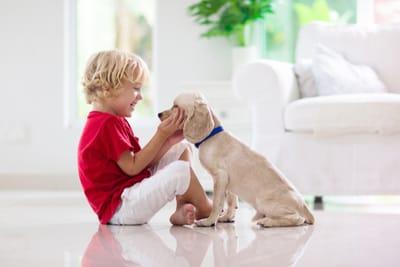 labrador-retriever-sul-pavimento-con-bambino