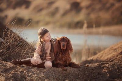 setter-irlandese-con-bambina-in-natura