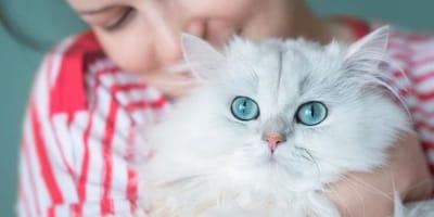 ragazza-abbraccia-gatto-bianco
