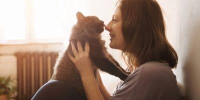 gatto-dimostra-affetto-alla-padrona