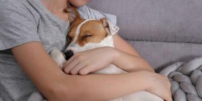 cagnolino-dorme-tra-le-braccia-di-un-bambino.jpg