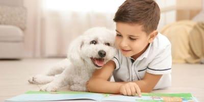 bambino-legge-un-libro-con-cane-bichon-frise
