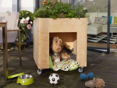 Caseta para perro hecha a mano
