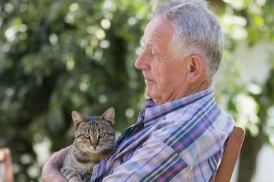 padre con gato