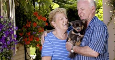 chihuahua perro abuelos