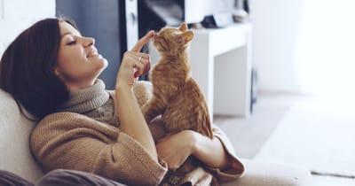 gato jugando con humana casa