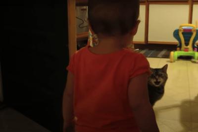 nina hablando con gato
