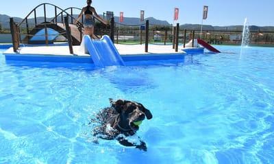 TRUST Resort Canino alicante