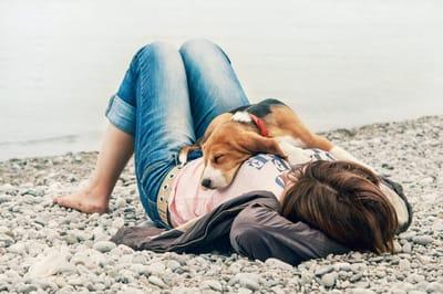 perro durmiendo en la barriga de su dueña