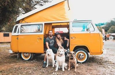 lamonchuneta viajar perro furgoneta