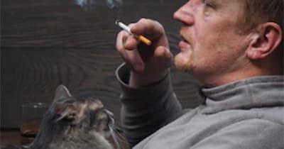 gato tabaco