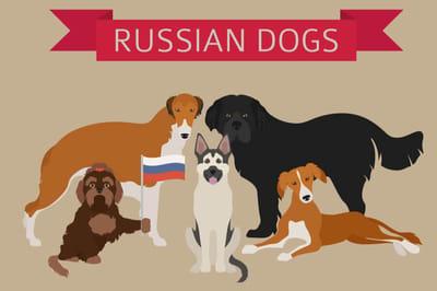 Russische Rassen