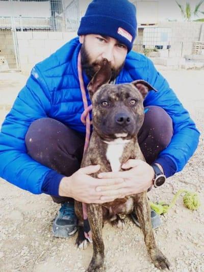 voluntario y perro abandonado