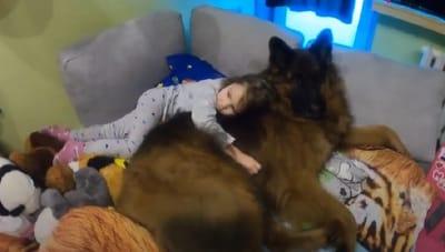 niña abraza a un pastor aleman en su cama