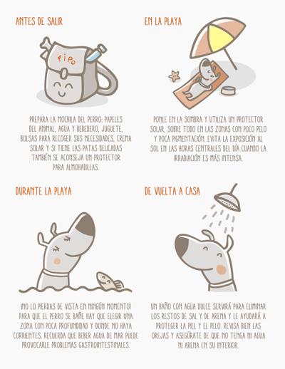 inforgrafia-fundacion-affinity-consejos-para-ir-con-tu-perro-a-la-playa