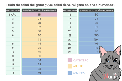 tabla calculo años gato