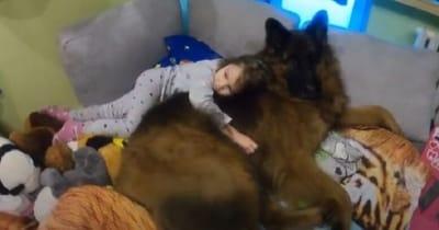 perro y niña en el cuarto