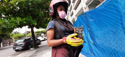 mujer bombero rescata gatito