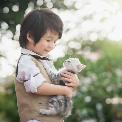 nino asiatico gato
