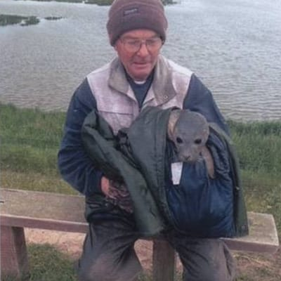 hombre y foca