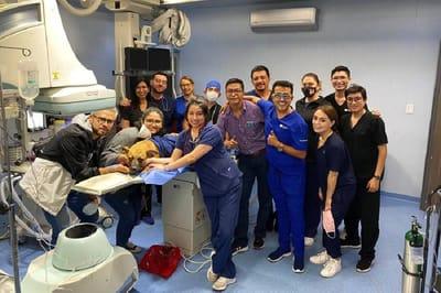 cirugia pulmonar canina