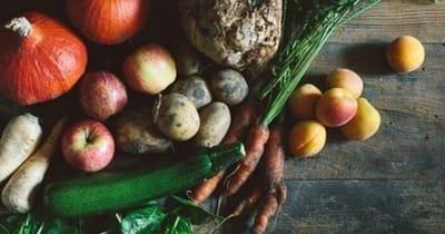 verdure-terracanis