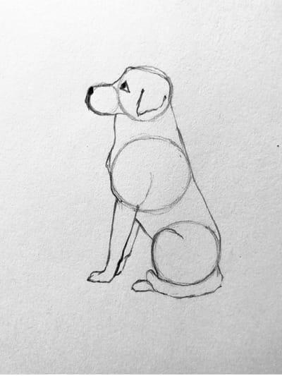 sagoma di cane disegnato