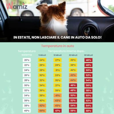tabella esplicativa delle temperature in auto al sole