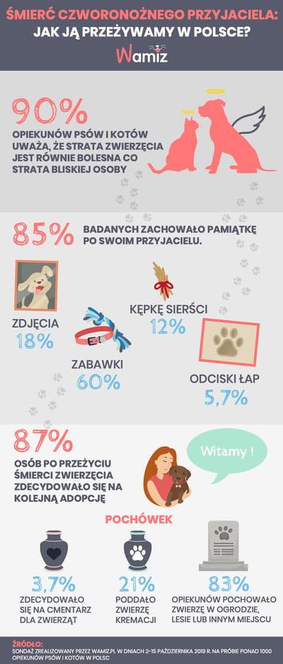 jak pożegnac czworonoga infografika