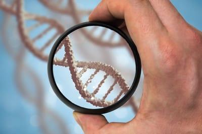 DNA człowieka