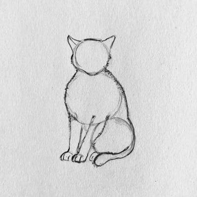 rysunek kota 3