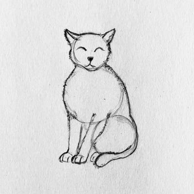 rysunek kota 4