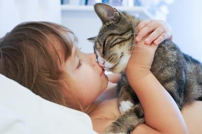 chłopiec przytula kota