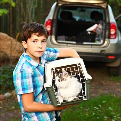 chłopiec z kotem
