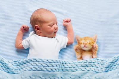 kot i noworodek