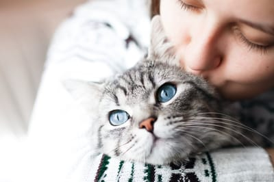opiekunka przytula kota