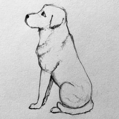 rysunek psa 5