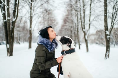 walentynki z psem