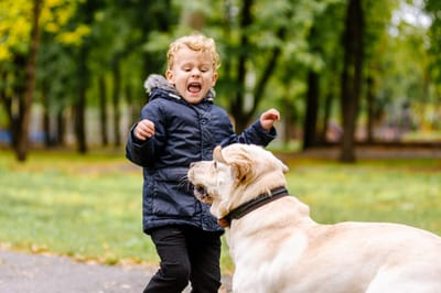dziecko boi sie psa