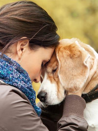 pożegnanie z psem