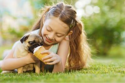 dziewczynka karmi psa lodem