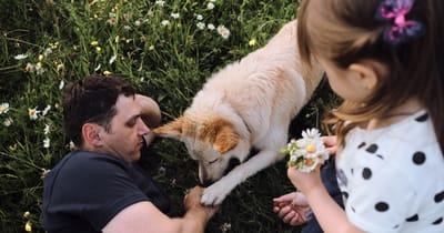famiglia parte in vacanza col cane e si rilassa sull'erba