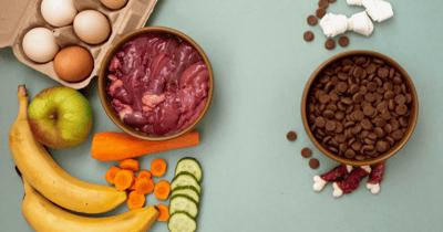 Fruit past in het dieet van een hond