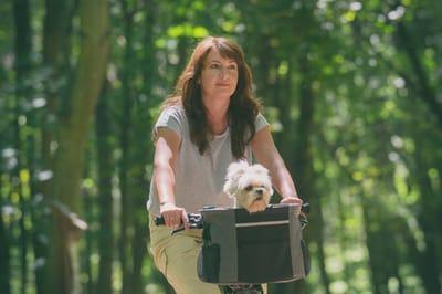 koszyk rowerowy dla psa